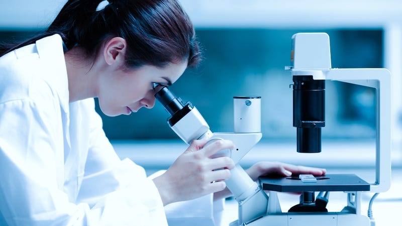 There's a Stark Gender Gap in Scientific Publishing