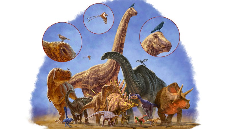 Dinosaurs Avoided Total Extinction By Getting Smaller And Smaller