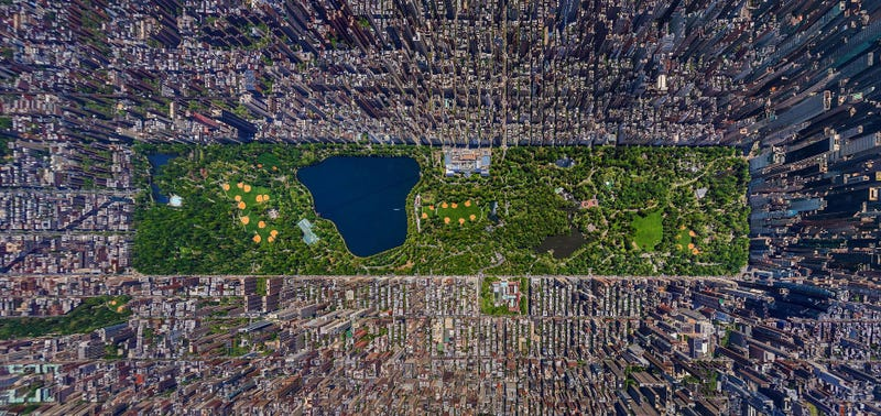 I can't believe this is a photo of Central Park