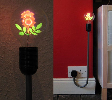 PlugLight Grows Out of the Wall, Has a Flower Filament