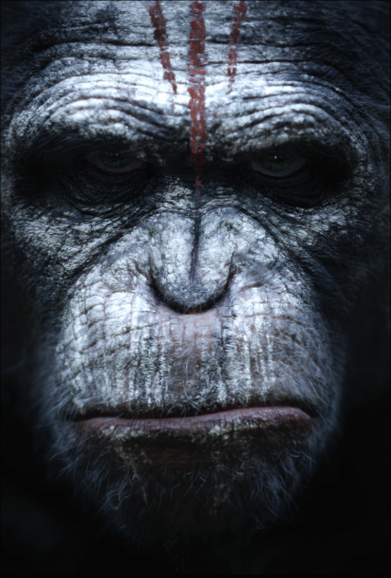 Meet the new ape army from Dawn of the Planet of the Apes