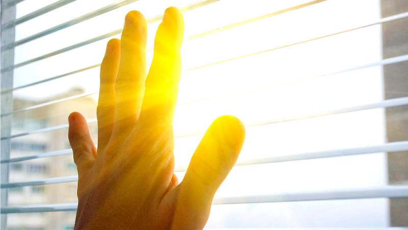 Awesome Window Skins Let Sun Keep You Warm in Winter, Cool in Summer