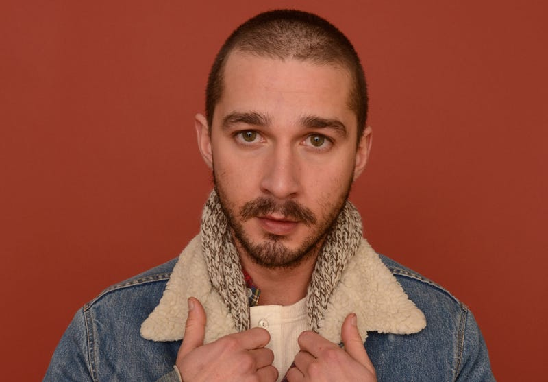 Woman Says Shia LaBeouf Was Kicked in the Balls for Filming Her Puking