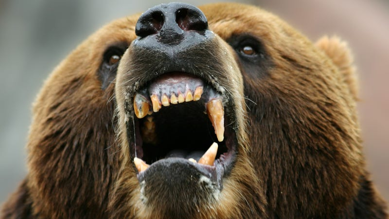 How to Calm Down an Angry Woman and/or Bear