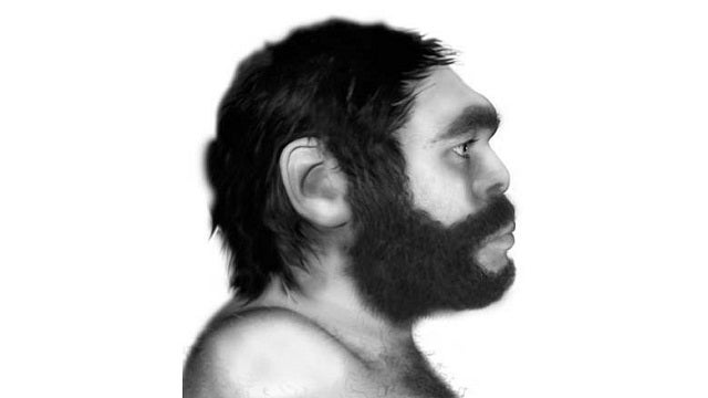You Can Thank Human-Neanderthal Relations for Your Strong Immune System
