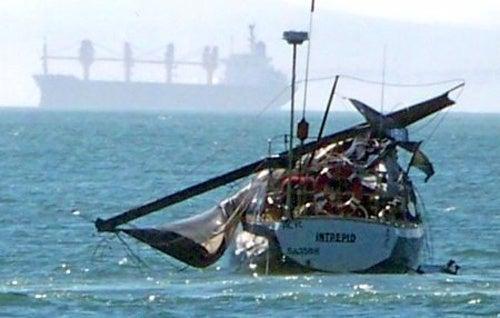 Whale Flails, Nails Frail Sail, Prevails, Bails