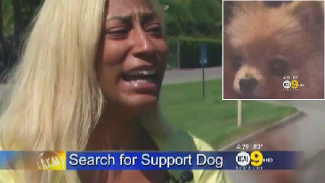 Woman Upset That Six Flags Rescued Her Dog From Her Hot Car, Then Lost Him