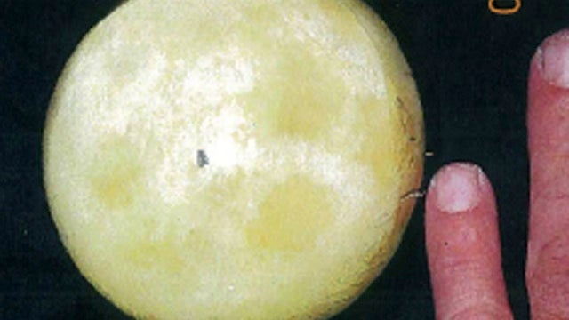 Wacky Stolen Moon Rock Bust Is Actually Very Sad
