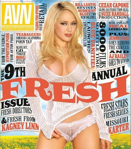 Porn Mags You Read For The Stories Grow Less Lucrative