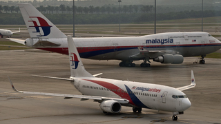 Malaysian Airline Flight Carrying 295 People Crashes in Ukraine