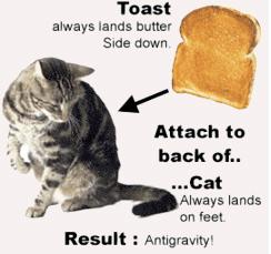 Cat+Toast=Anti-Gravity