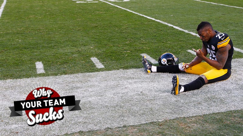 Why Your Team Sucks 2013: Pittsburgh Steelers