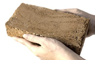 Bricks made of bacteria could build a more sustainable world