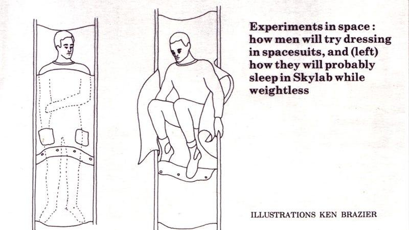 The Skylab I Never Knew