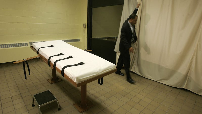 Could We Have Some Real Scientists Look At Executions Now, Please?