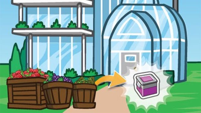 CityVille Eternal Spring Greenhouse: Everything You Need to Know