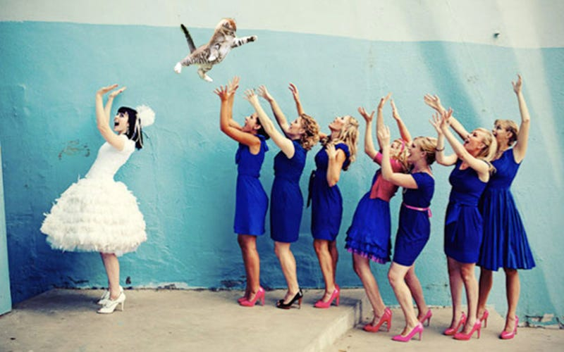 Brides Throwing Cats Is Your New Favorite Wedding Cativity