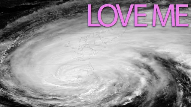 Hurricane Irene Has an OK Cupid Profile