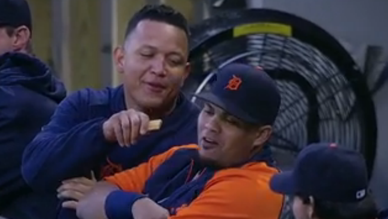 Miguel Cabrera Tries To Force-Feed One Of His Teammates