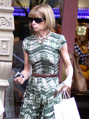 Anna Wintour Forces Bodyguards to Carry Her, and Other Tales of Disbelief