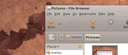 Ubuntu 9.04 Includes Popular Themes from the Community