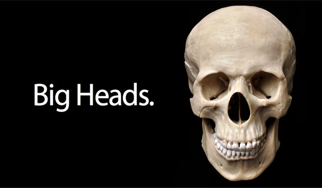 American Heads Are Getting Larger