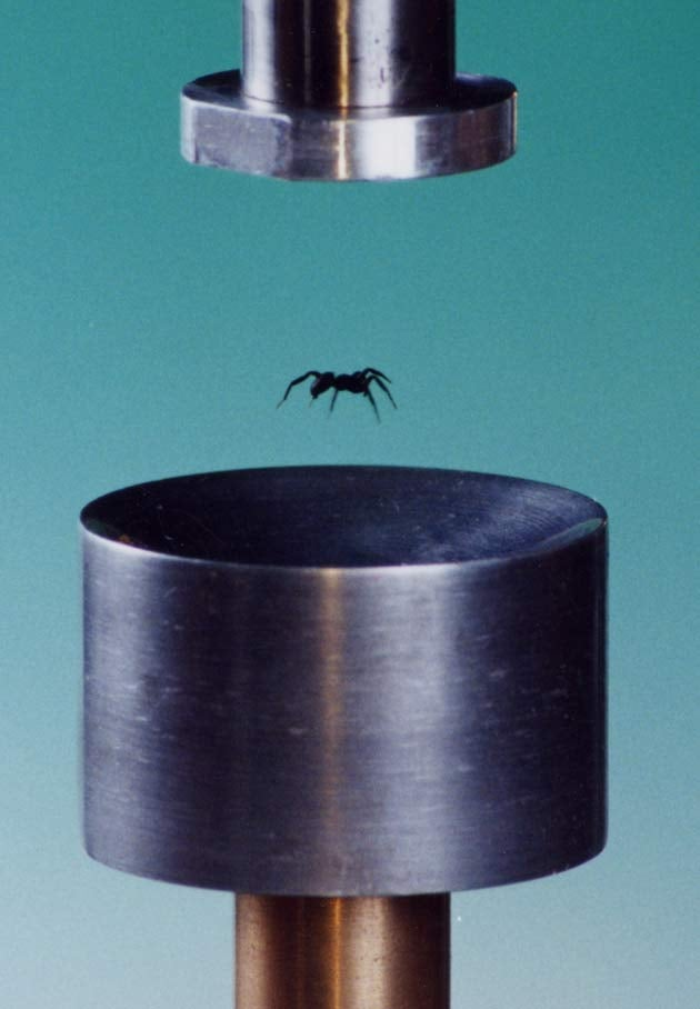 Yes, You Can Levitate Objects With Sound