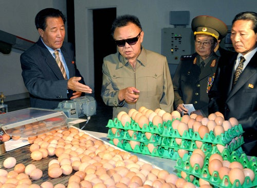 No Imperialist Salmonella In These Eggs, Dear Leader