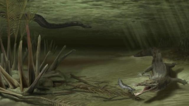 The ancient war between 20-foot crocodiles and 50-foot snakes