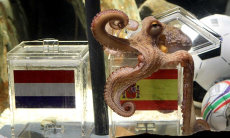 "Ahmadinejad Says Paul The Octopus Spreading ""Western Propaganda And Superstition"""