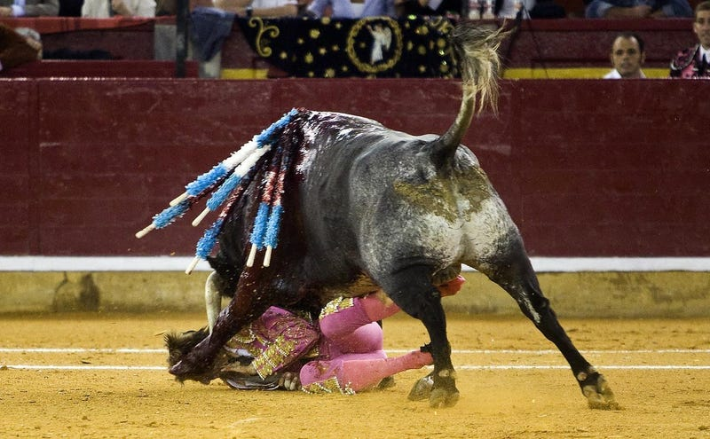 Five Months After Horrific Goring, Matador Tries A Comeback