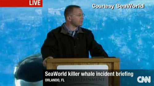 SeaWorld CEO Announces—Ohmigod Look Behind You!