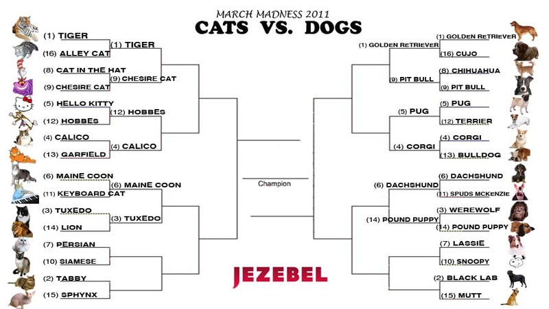 Cats vs. Dogs: A Major Upset!