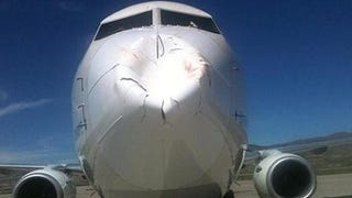 What happens when a flock of birds hits an airplane head on