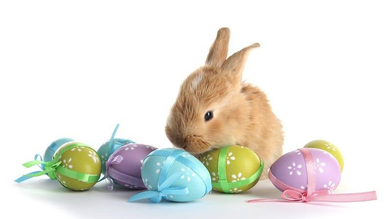 Preschooler Finds a Xanax Inside One of Her Easter Eggs