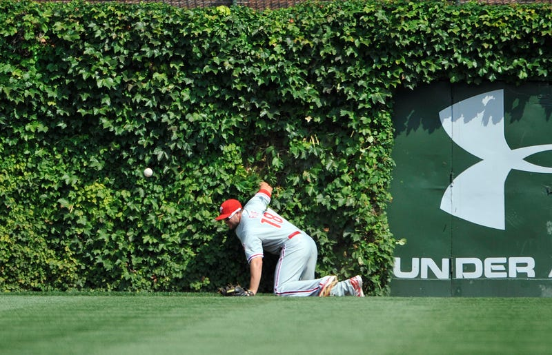 Two Men Caught Trying To Steal Ivy From Wrigley Field