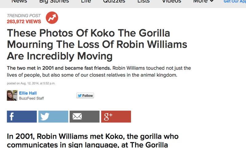Asshole Gorilla Humps Robin Williams' Corpse for Publicity