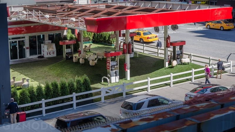 This NYC Gas Station Is Home to a Temporary Sheep Pasture