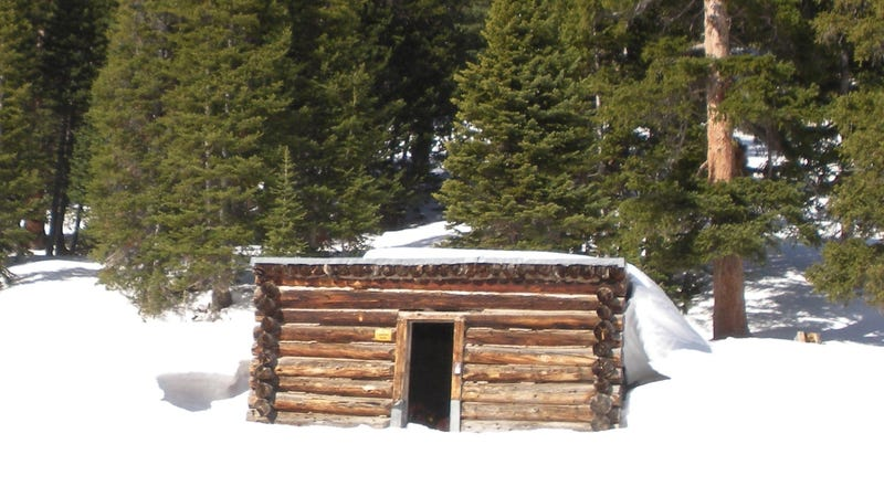 Cows Found Frozen in Colorado Cabin Could Contaminate Hot Springs