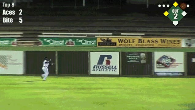 Australia Needs To Work On Their Outfield Fence Construction Skills
