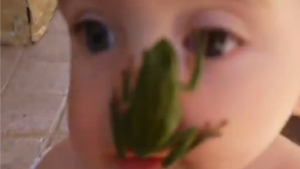 Cute Little Girl Gets A Face Full of Tree Frog
