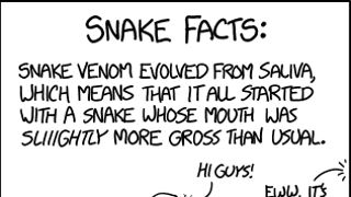 "Biologically speaking, what we call ""snake""..."