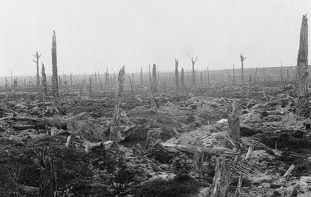 A view of Flanders Field in Belgium - what used to be a forest. It's the result of countless artillery strikes by German and British heavy guns.