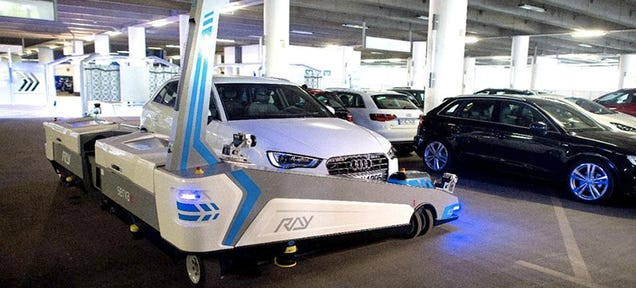 Ray the Robot Valet