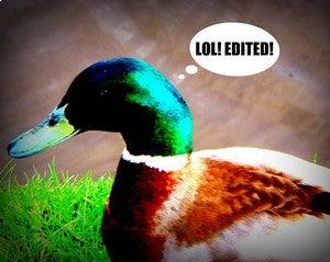 Best Online Image Editor?