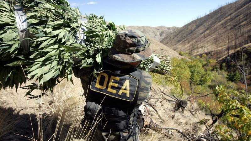 DEA Illegally GPS-Tracked a Drug Runner, Now It Can't Enter 150 Pounds of Found Weed Into Evidence