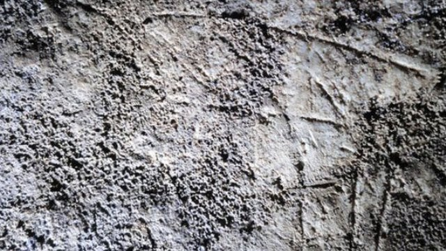 Ancient Brits were carving reindeer art 15,000 years ago