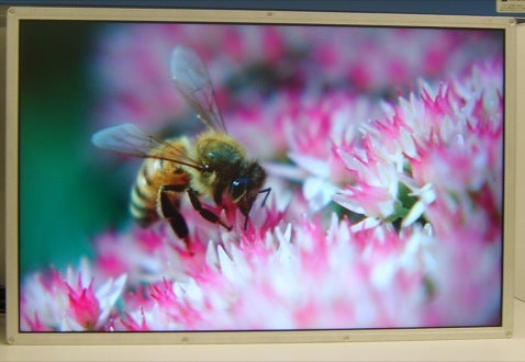 Samsung the First to Develop DisplayPort LCD panel