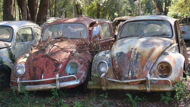 Massive vintage VW 'graveyard' is the latest junkyard casualty