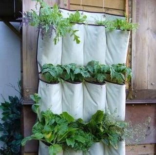 Turn a Shoe Organizer into a Vertical Herb Garden